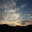 Kosumosu_0004